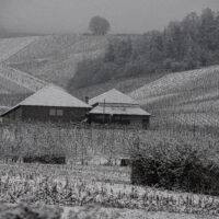 Strümpfelbach im Schnee